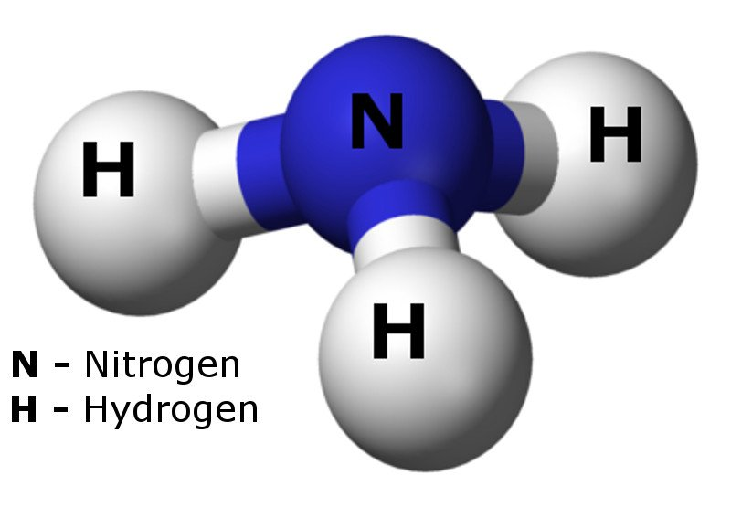 Ammonia is key to a hydrogen economy