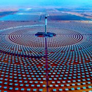 Saudi Government Raises Ownership to Half of Global Solar Leader ACWA Power