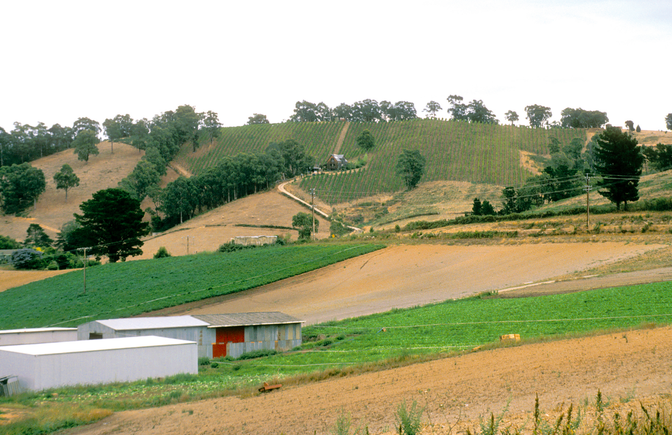 IMAGE@CSIRO Farming in Australia